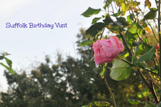 Suffolk Birthday Visit Cover Photo